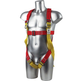 2-Point Harness Plus