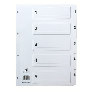 Classic Index 1-5 A4 White Board With Clear Mylar Tabs 00501/