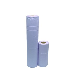 Blue 2-Ply Hygiene Roll 10 Inch (24 Pack)