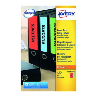 Assorted Lever Arch Spine Label 200x60mm (80 Pack) L7171A-