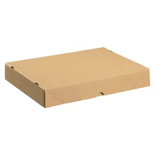 Carton With Lid 305x215x50mm Brown (10 Pack) 144666
