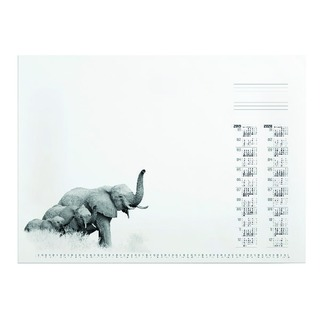 African Wildlife Desk refill Pad 570 x 410mm 7323