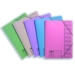 Foolscap Assorted Elasticated 9 Part Files (10 Pack)