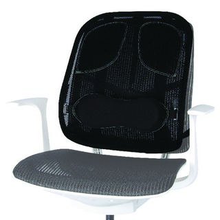 Professional Series Mesh Back Support Black 8029901