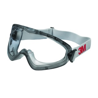 Clear 2890S Safety Goggles DE272934055
