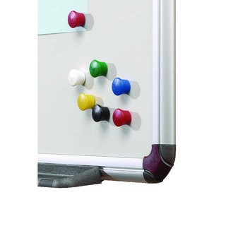 Assorted 18mm Drawing Pin Magnets (12 Pack) 19