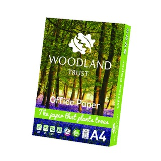 A4 Office Paper 75gsm Pack of 2500 WTOA4