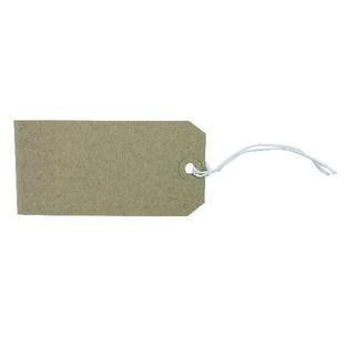 120x60mm Strung Tag (1000 Pack)