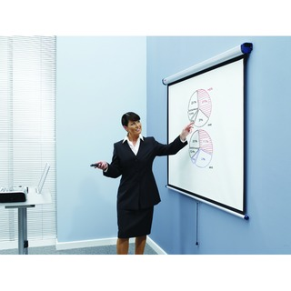 Matte White 99 inch Wall Projection Screen 1902393