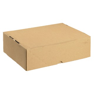 Carton With Lid 305x215x100mm Brown (10 Pack) 14466