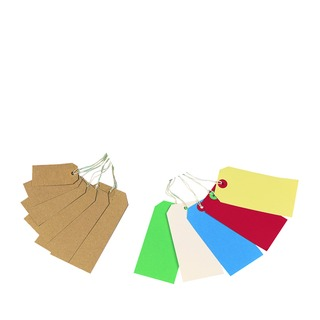 70x35mm Strung Tag (1000 Pack)