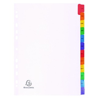 A4 White Index Coloured Tabs 12 Part January - December 1113E